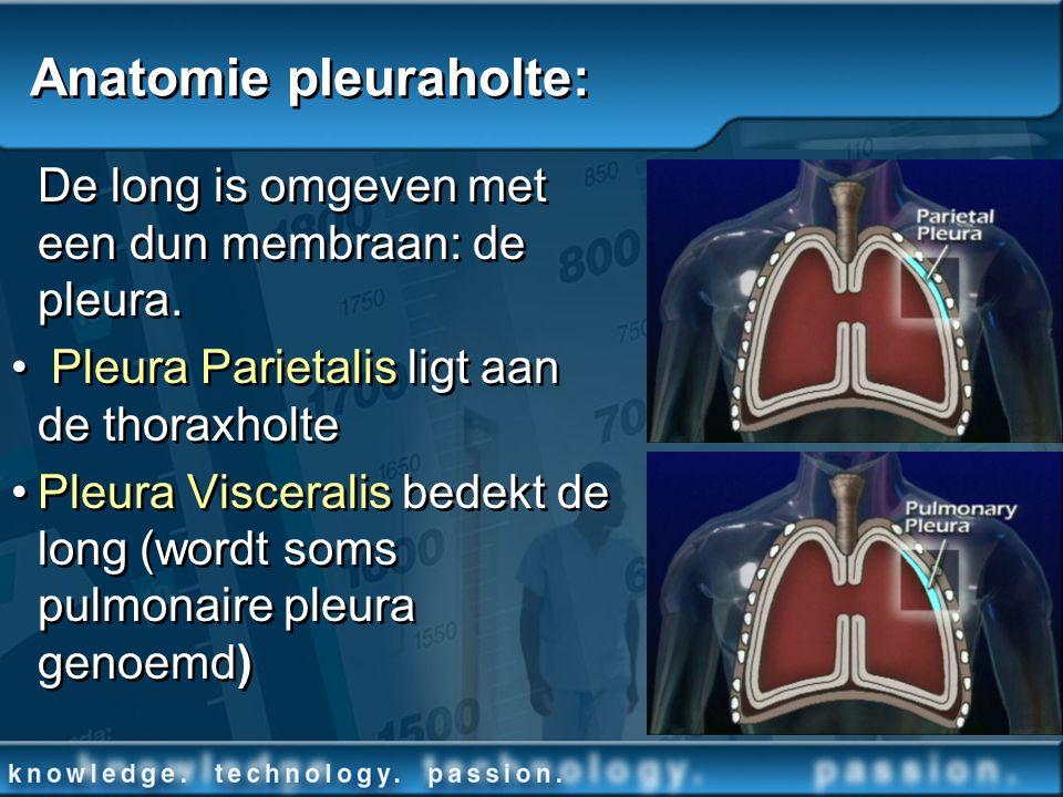De long is omgeven met een dun membraan: de pleura. Pleura Parietalis ligt aan de thoraxholte Pleura Visceralis bedekt de long (wordt soms pulmonaire
