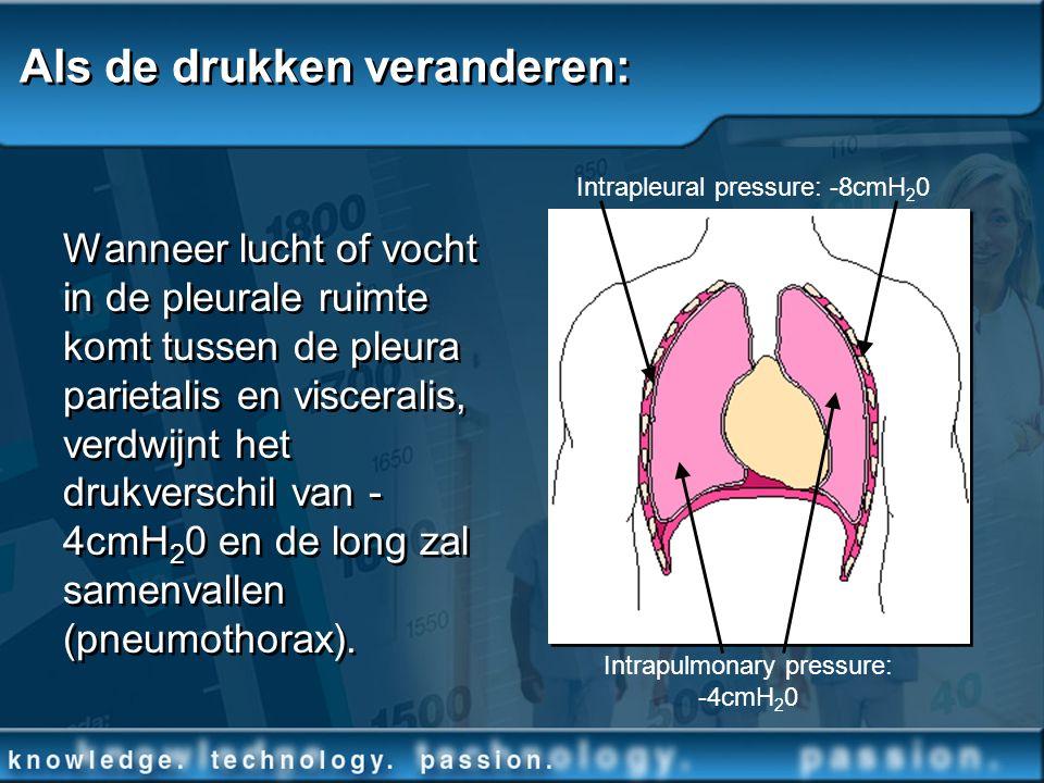 Als de drukken veranderen: Wanneer lucht of vocht in de pleurale ruimte komt tussen de pleura parietalis en visceralis, verdwijnt het drukverschil van