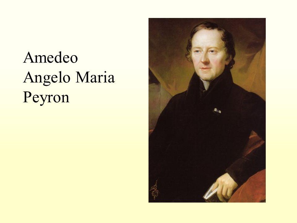 Amedeo Angelo Maria Peyron