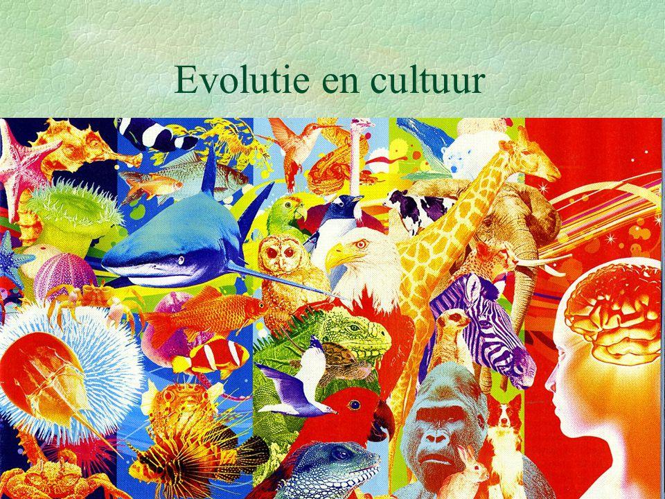 Evolutie en cultuur