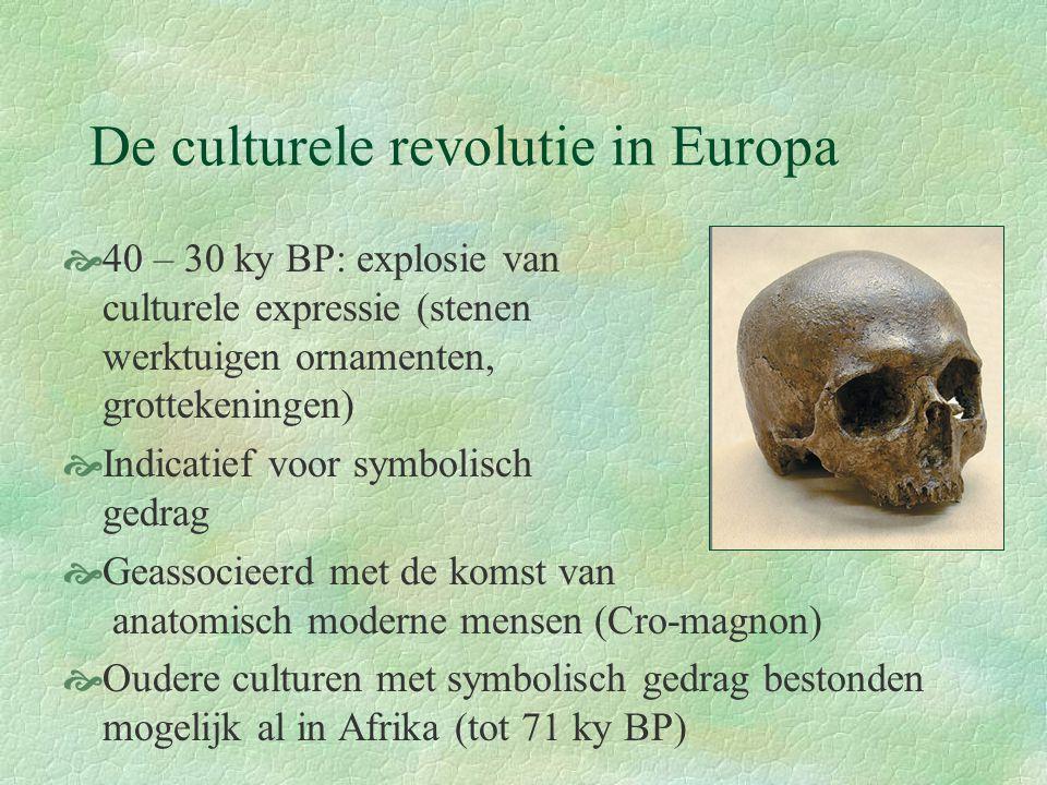 De culturele revolutie in Europa  40 – 30 ky BP: explosie van culturele expressie (stenen werktuigen ornamenten, grottekeningen)  Indicatief voor sy