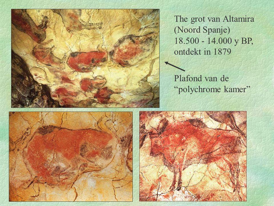 """Plafond van de """"polychrome kamer"""" The grot van Altamira (Noord Spanje) 18.500 - 14.000 y BP, ontdekt in 1879"""