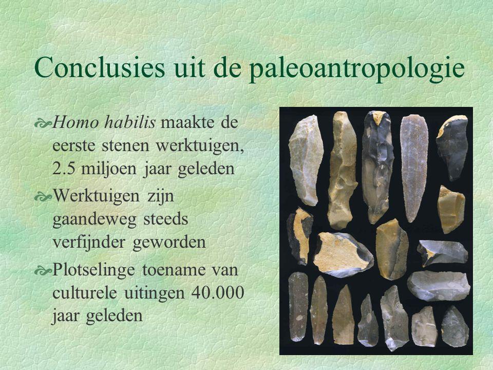 Conclusies uit de paleoantropologie  Homo habilis maakte de eerste stenen werktuigen, 2.5 miljoen jaar geleden  Werktuigen zijn gaandeweg steeds ver