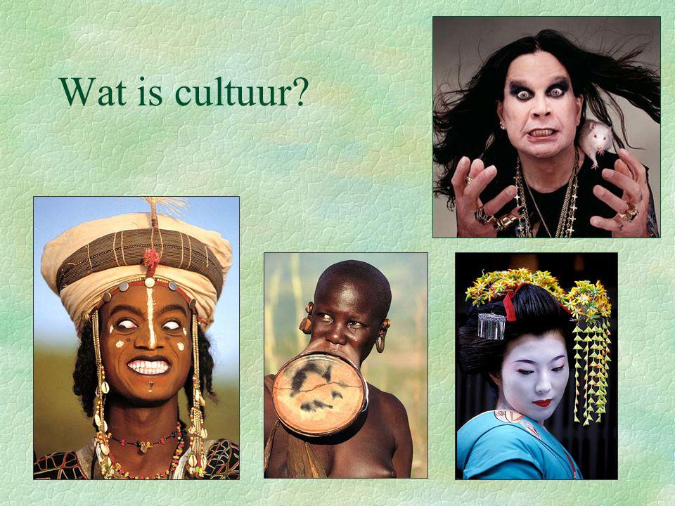 Wat is cultuur?