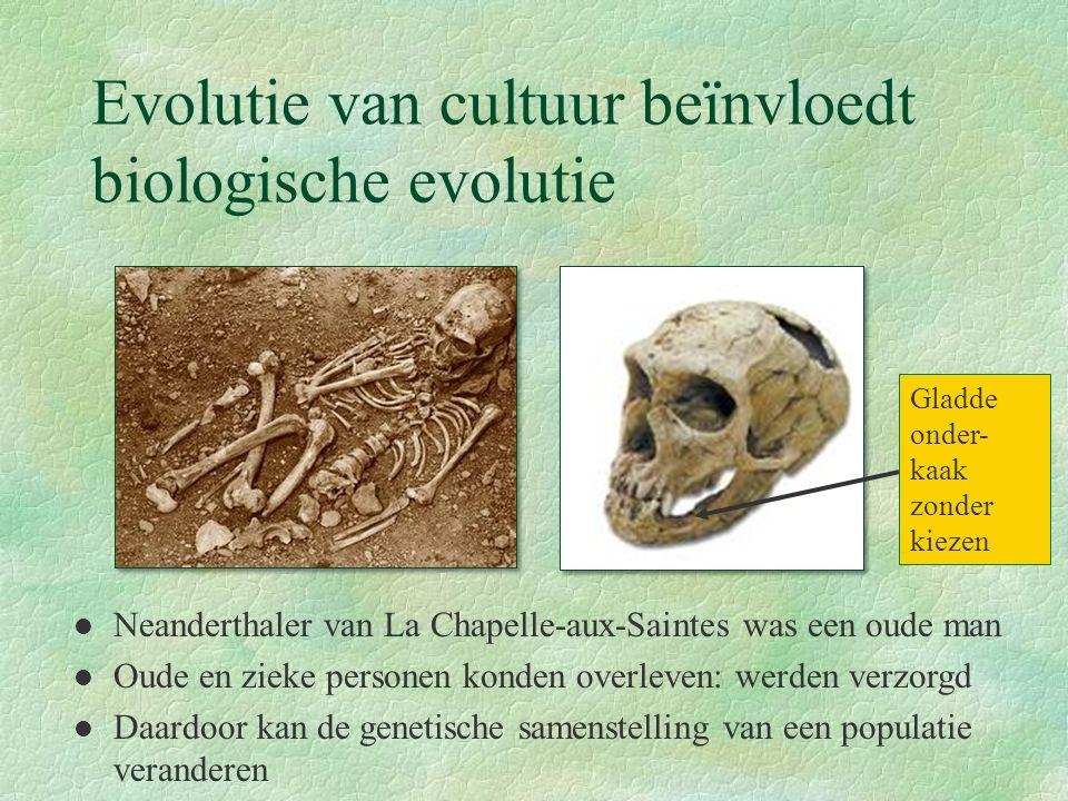 Evolutie van cultuur beïnvloedt biologische evolutie Neanderthaler van La Chapelle-aux-Saintes was een oude man Oude en zieke personen konden overleve