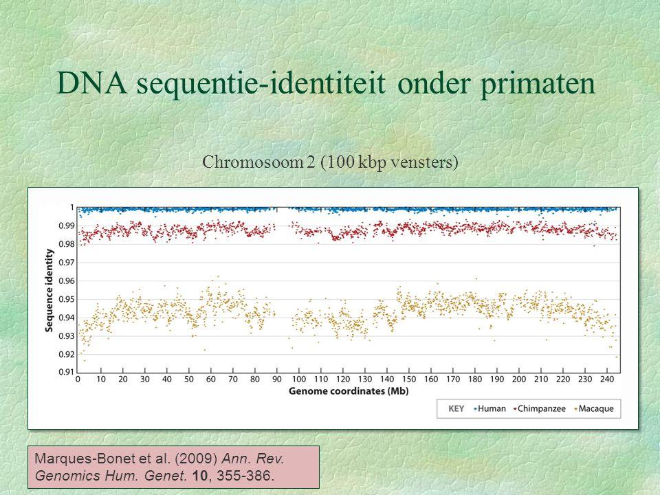 DNA sequentie-identiteit onder primaten Chromosoom 2 (100 kbp vensters) Marques-Bonet et al. (2009) Ann. Rev. Genomics Hum. Genet. 10, 355-386.