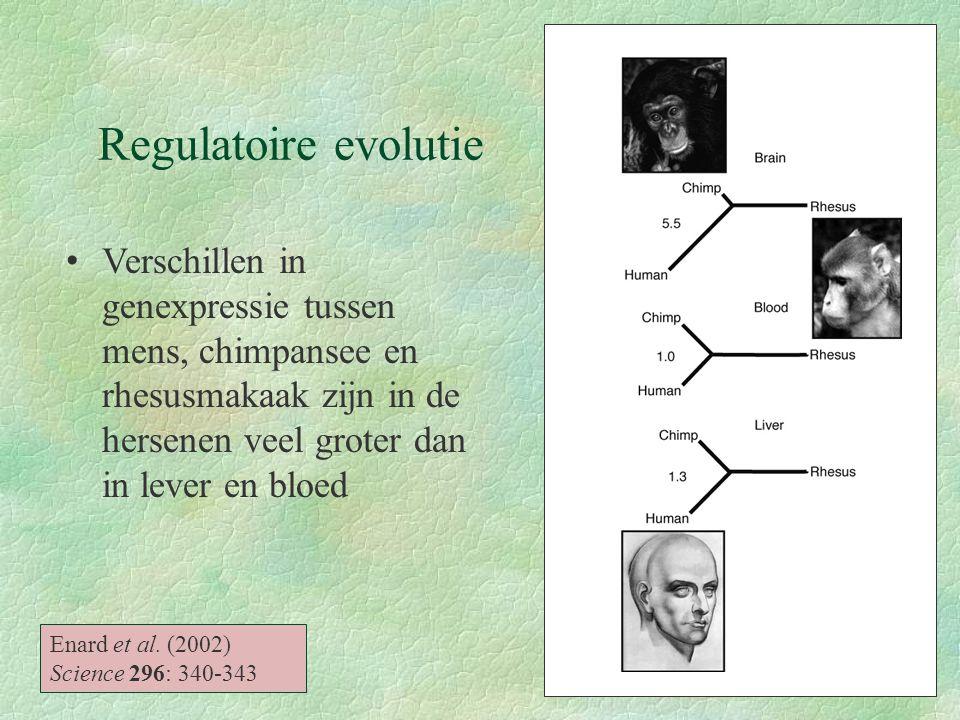 Regulatoire evolutie Enard et al. (2002) Science 296: 340-343 Verschillen in genexpressie tussen mens, chimpansee en rhesusmakaak zijn in de hersenen