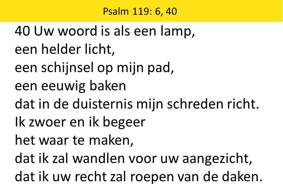40 Uw woord is als een lamp, een helder licht, een schijnsel op mijn pad, een eeuwig baken dat in de duisternis mijn schreden richt.