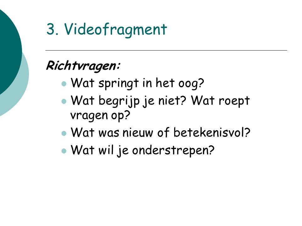 3. Videofragment Richtvragen: Wat springt in het oog? Wat begrijp je niet? Wat roept vragen op? Wat was nieuw of betekenisvol? Wat wil je onderstrepen
