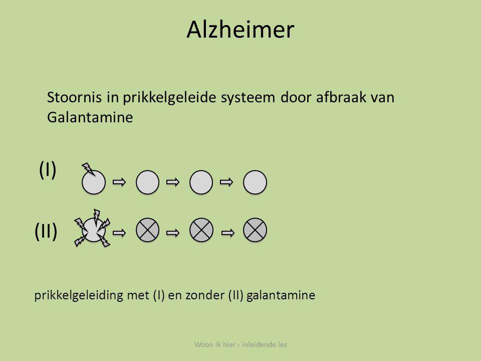 Alzheimer Stoornis in prikkelgeleide systeem door afbraak van Galantamine (I) (II) prikkelgeleiding met (I) en zonder (II) galantamine Woon ik hier -