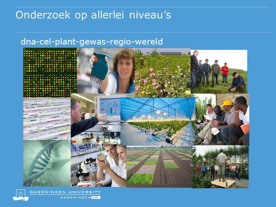 Onderzoek op allerlei niveau's dna-cel-plant-gewas-regio-wereld