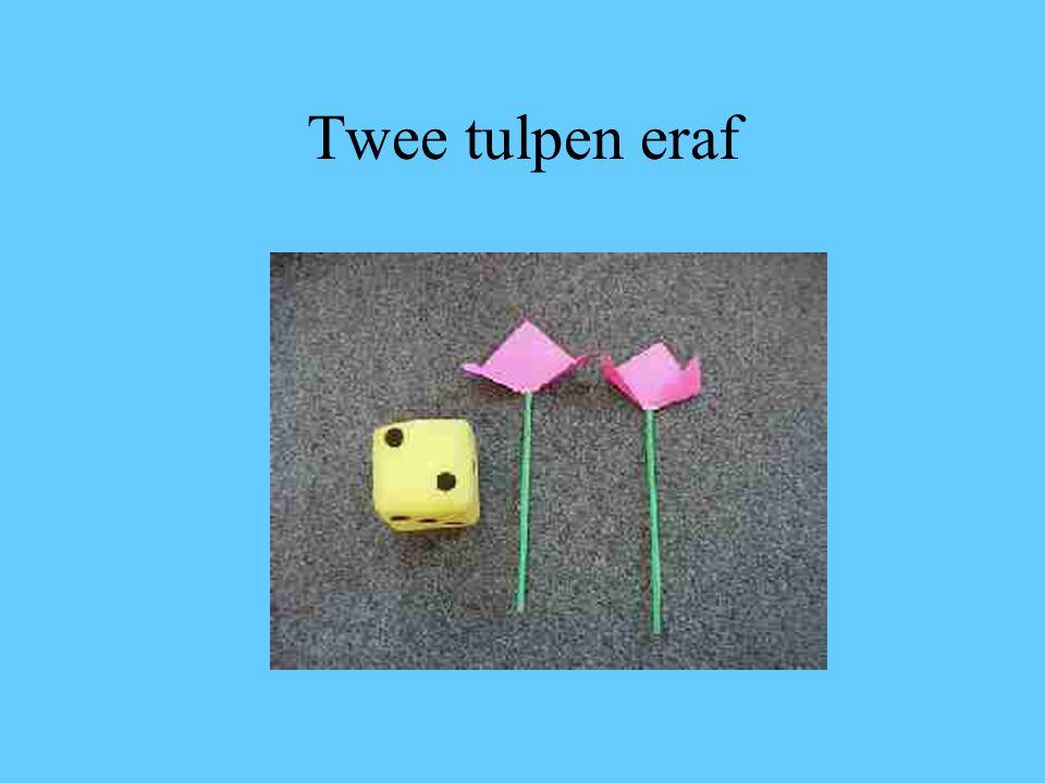 Twee tulpen eraf