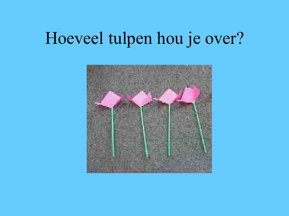 Welk aantal moet je met de dobbelsteen gooien om alle tulpen weg te kunnen pakken?