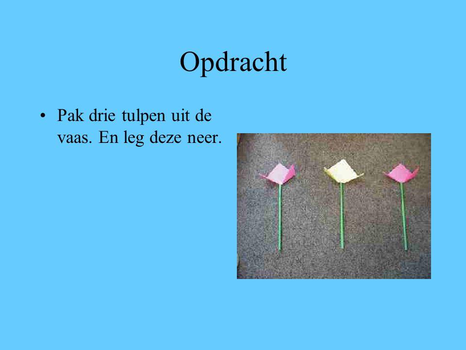 Opdracht Pak drie tulpen uit de vaas. En leg deze neer.
