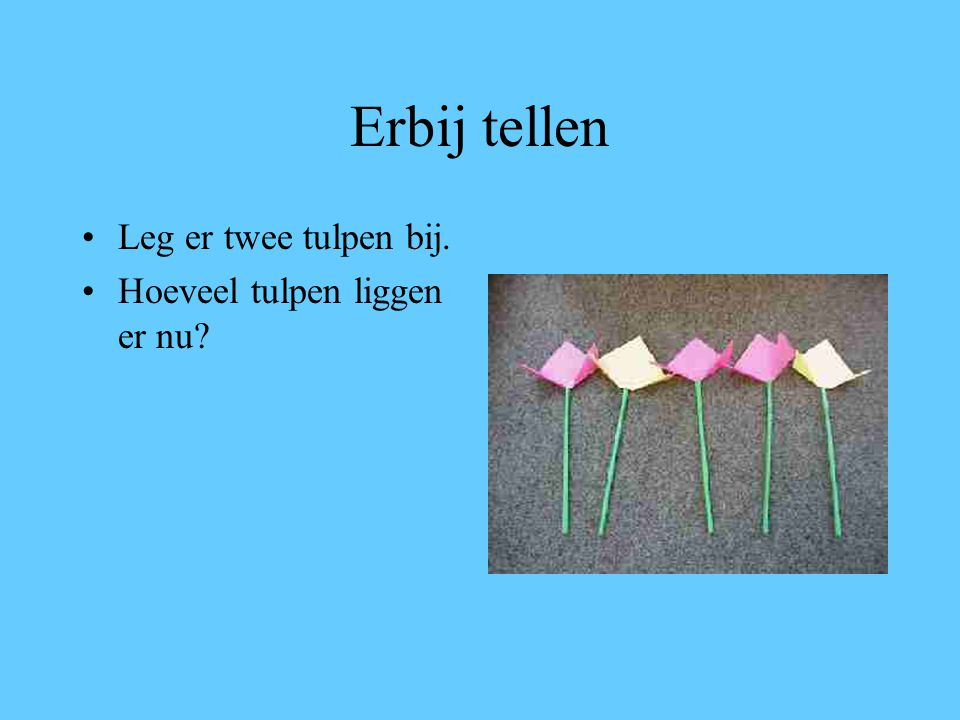 Erbij tellen Leg er twee tulpen bij. Hoeveel tulpen liggen er nu?