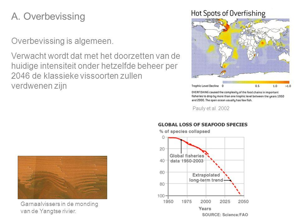 A.Overbevissing Overbevissing is algemeen.