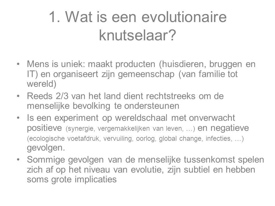 1.Wat is een evolutionaire knutselaar.