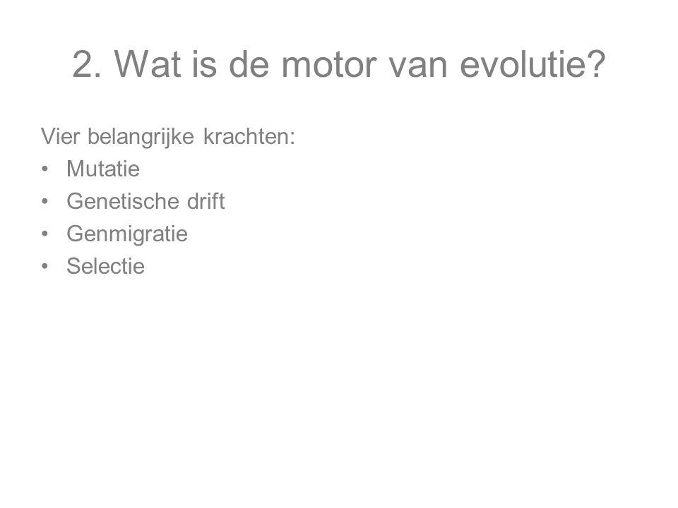 2.Wat is de motor van evolutie.