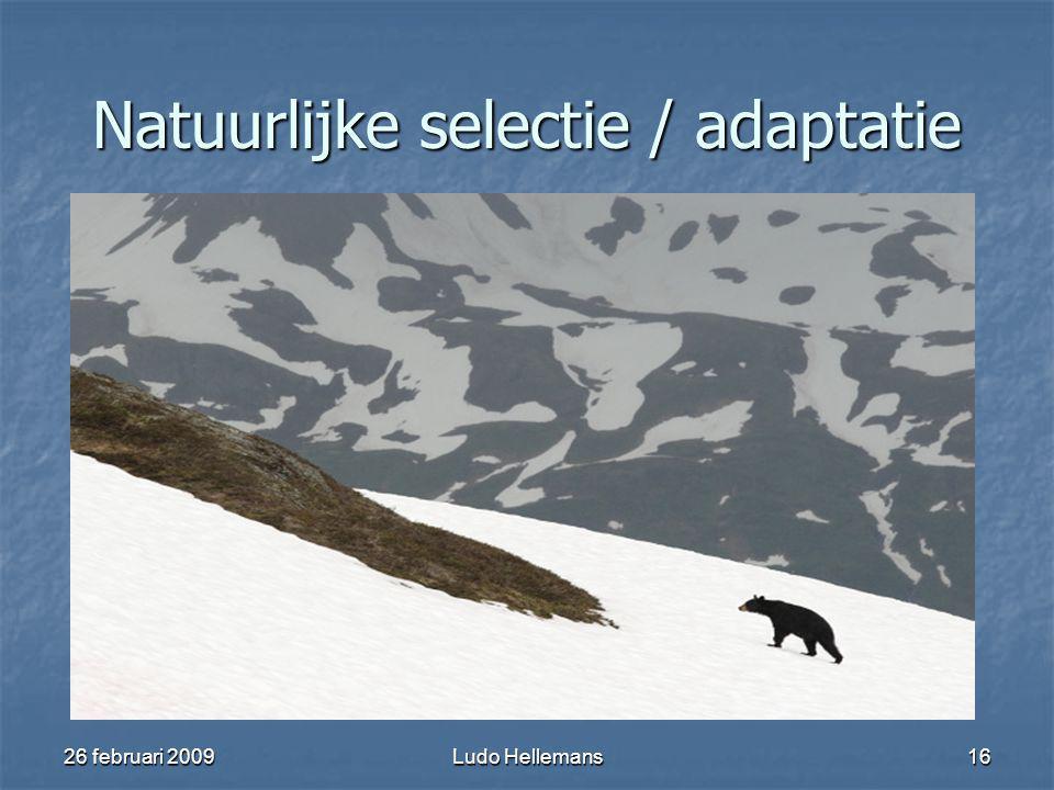 26 februari 2009Ludo Hellemans16 Natuurlijke selectie / adaptatie