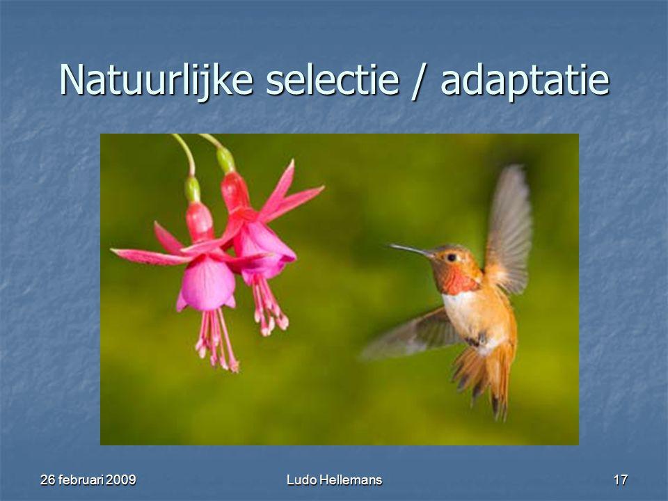 26 februari 2009Ludo Hellemans17 Natuurlijke selectie / adaptatie