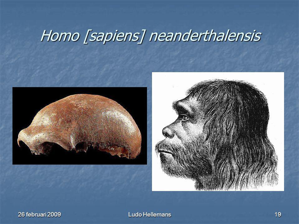 26 februari 2009Ludo Hellemans19 Homo [sapiens] neanderthalensis