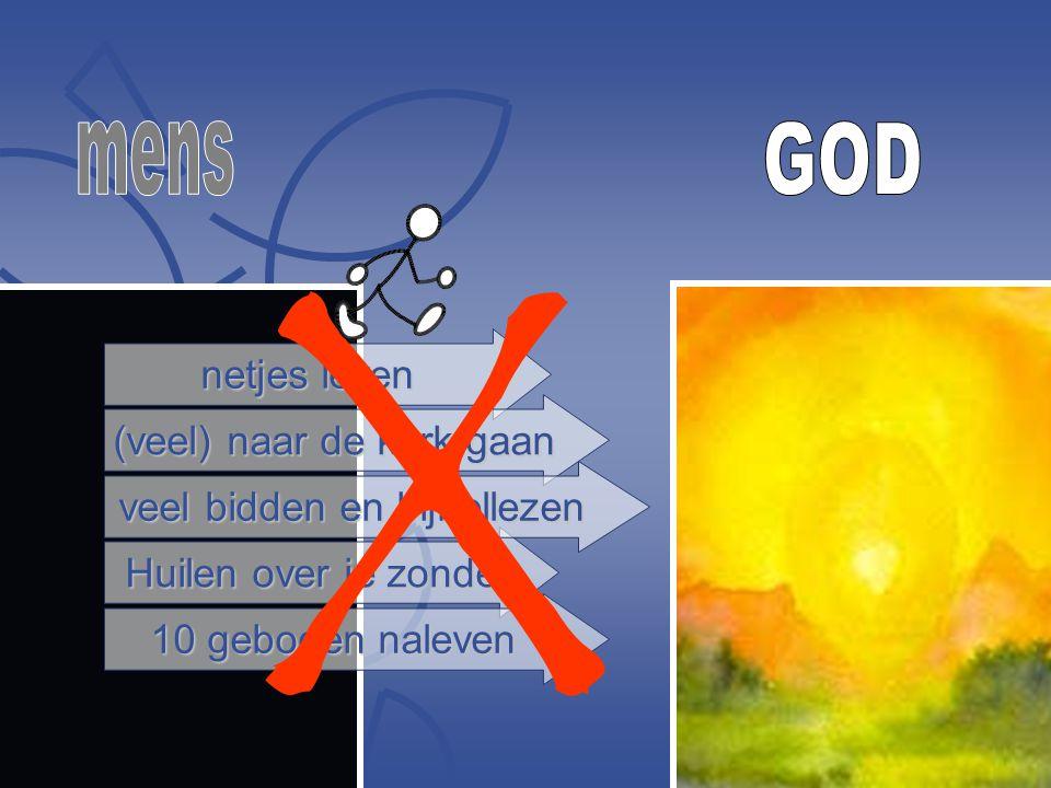 netjes leven (veel) naar de kerk gaan Huilen over je zonde 10 geboden naleven veel bidden en bijbellezen X