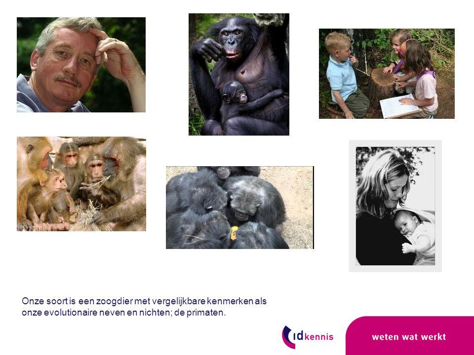 Onze soort is een zoogdier met vergelijkbare kenmerken als onze evolutionaire neven en nichten; de primaten.