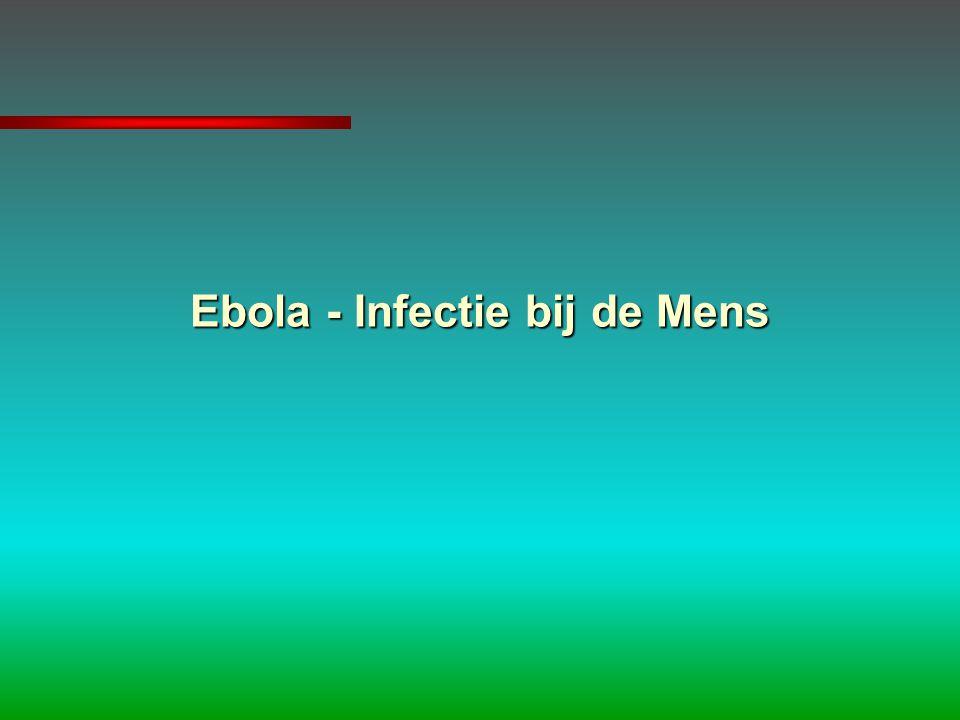 Ebola - Infectie bij de Mens