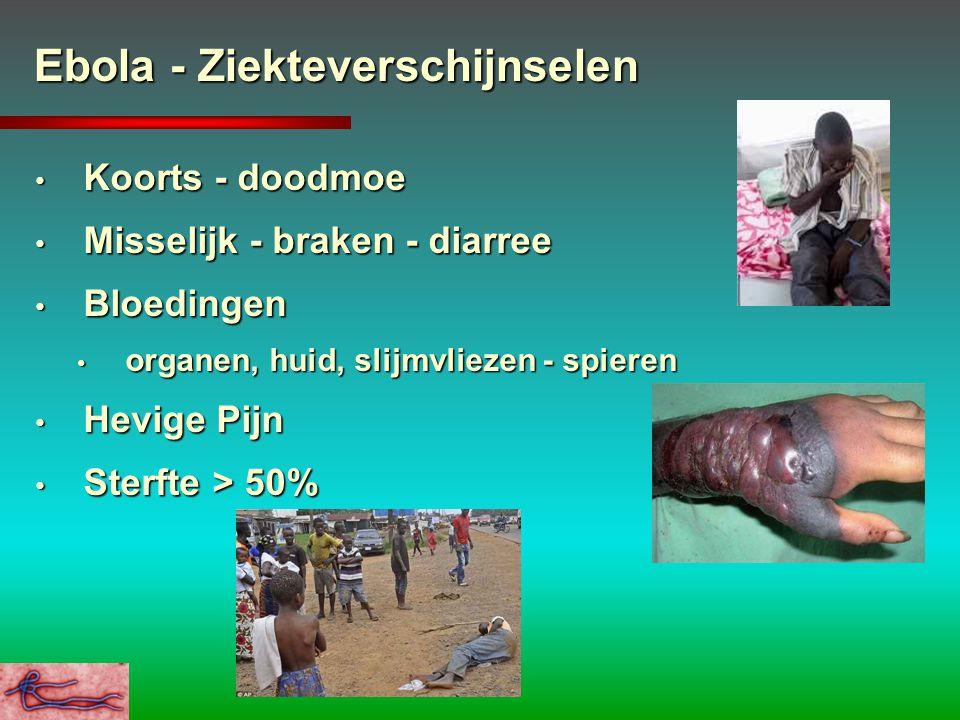 Ebola - Ziekteverschijnselen Koorts - doodmoe Koorts - doodmoe Misselijk - braken - diarree Misselijk - braken - diarree Bloedingen Bloedingen organen