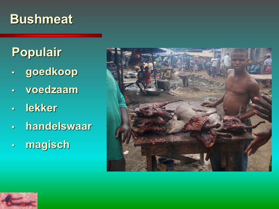 Bushmeat Populair goedkoop goedkoop voedzaam voedzaam lekker lekker handelswaar handelswaar magisch magisch