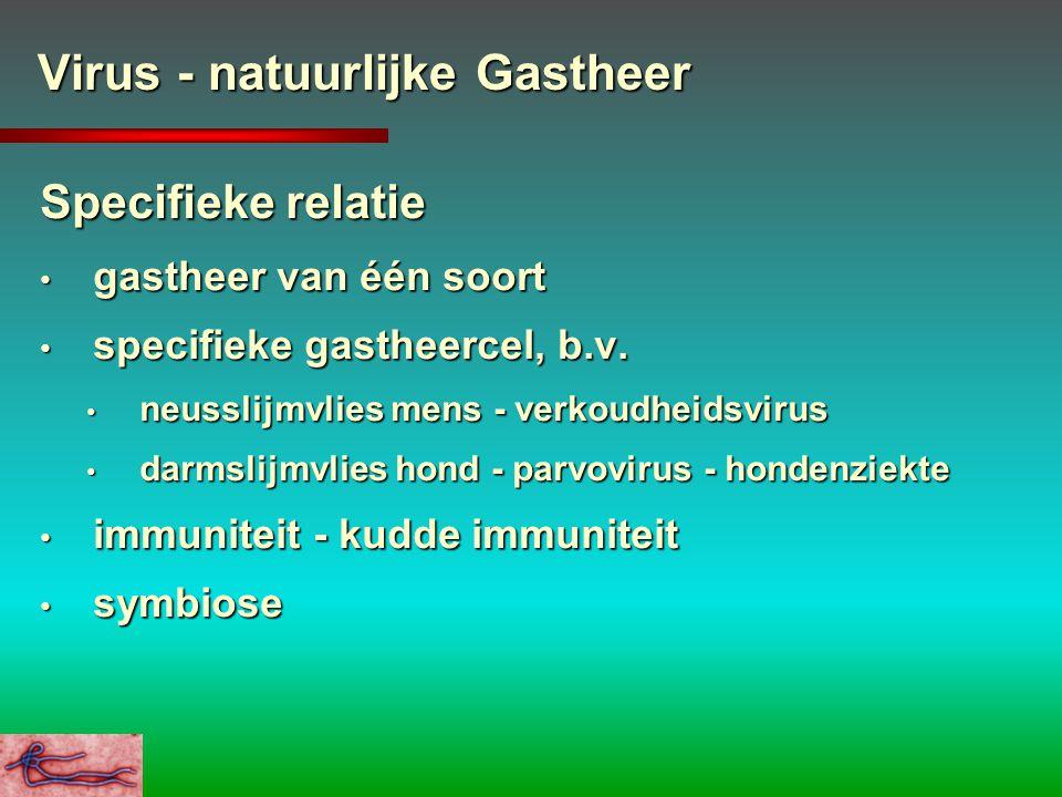 Virus - natuurlijke Gastheer Specifieke relatie gastheer van één soort gastheer van één soort specifieke gastheercel, b.v. specifieke gastheercel, b.v