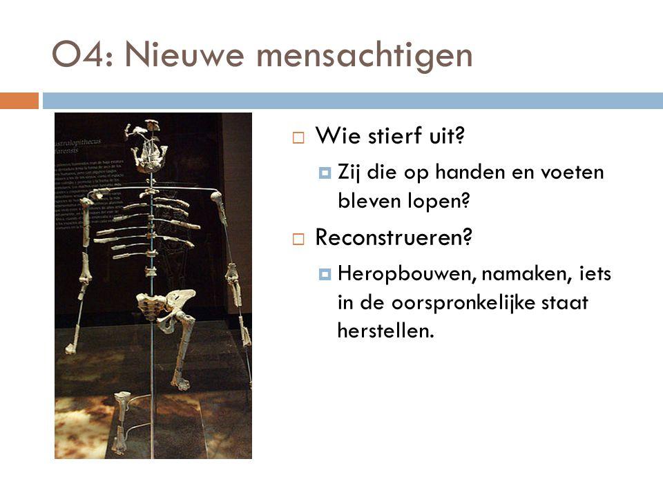 O4: Nieuwe mensachtigen  Wie stierf uit. Zij die op handen en voeten bleven lopen.