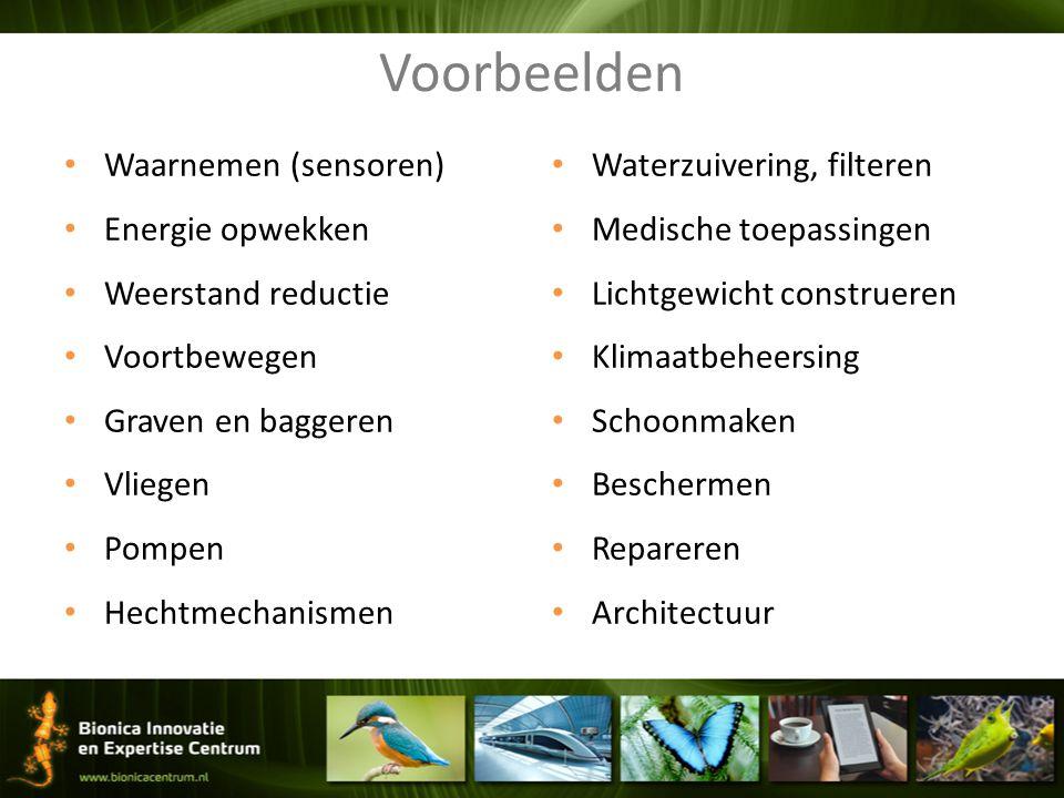 Waarnemen (sensoren) Energie opwekken Weerstand reductie Voortbewegen Graven en baggeren Vliegen Pompen Hechtmechanismen Waterzuivering, filteren Medi