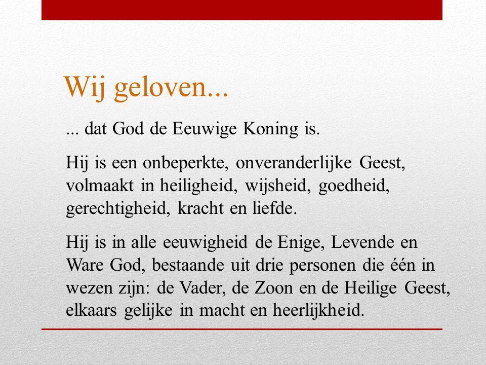Wij geloven...... dat God de Eeuwige Koning is. Hij is een onbeperkte, onveranderlijke Geest, volmaakt in heiligheid, wijsheid, goedheid, gerechtighei