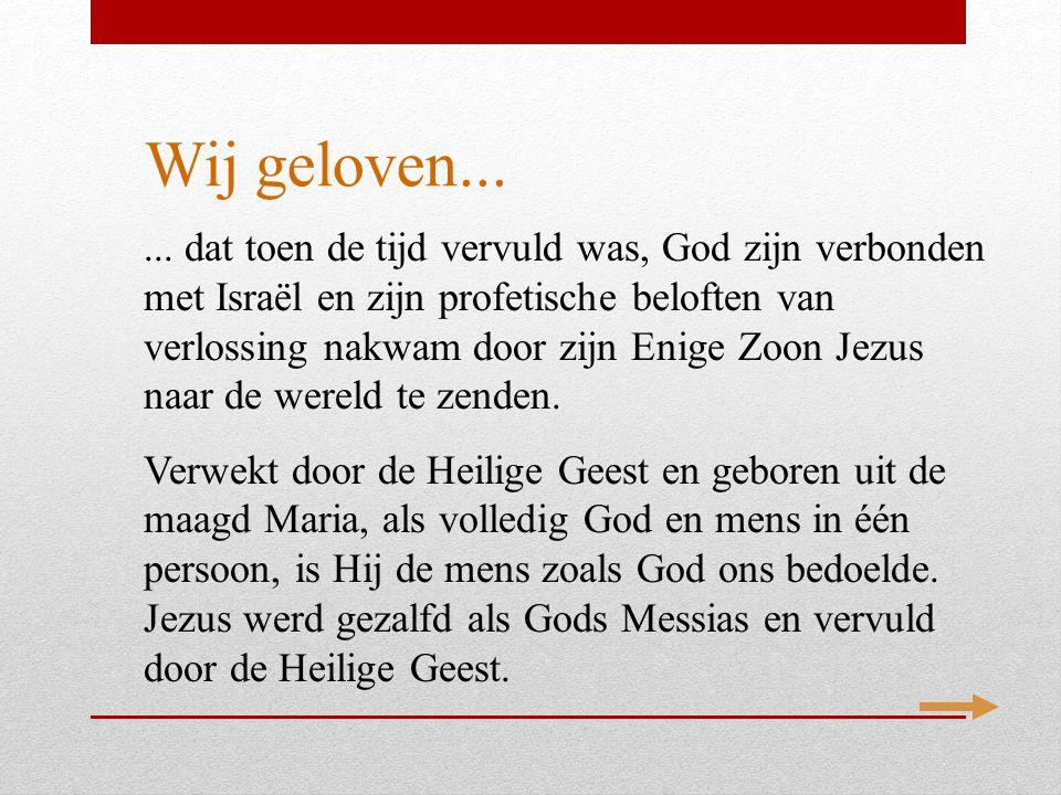Wij geloven...... dat toen de tijd vervuld was, God zijn verbonden met Israël en zijn profetische beloften van verlossing nakwam door zijn Enige Zoon
