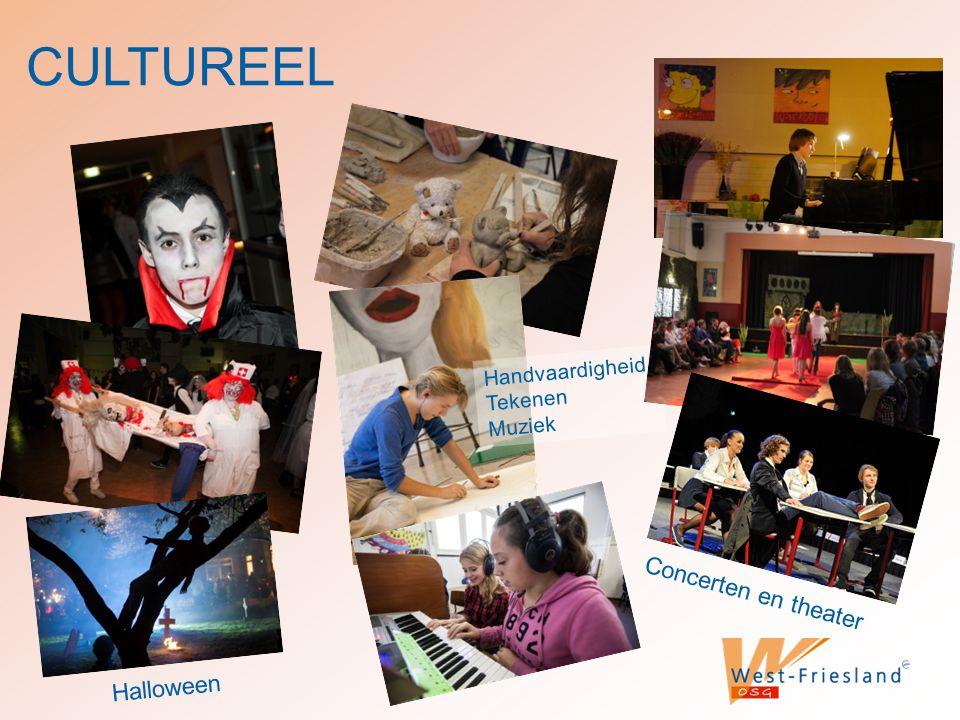 CULTUREEL Handvaardigheid Tekenen Muziek Halloween Concerten en theater
