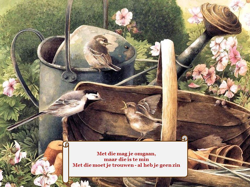 De mensen - ze schrijven je leefregels voor Ze geven je raad en ze roepen in koor: Zó moet je leven!..