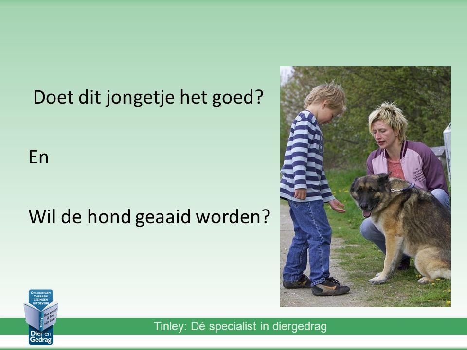 Tinley: Dé specialist in diergedrag Doet dit jongetje het goed? En Wil de hond geaaid worden?
