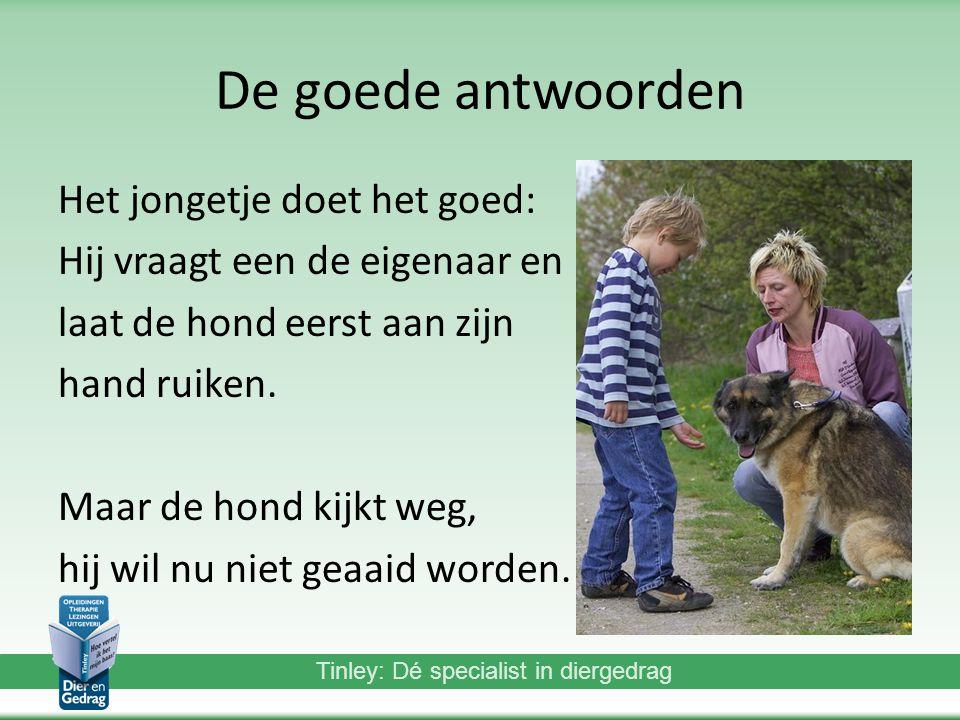 Tinley: Dé specialist in diergedrag De goede antwoorden Het jongetje doet het goed: Hij vraagt een de eigenaar en laat de hond eerst aan zijn hand ruiken.
