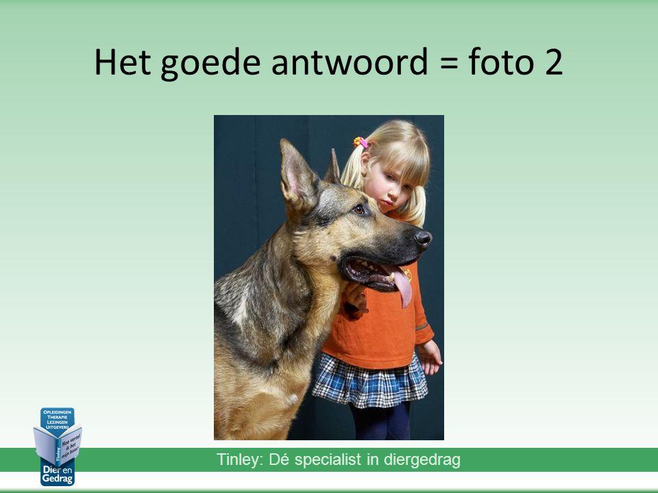 Tinley: Dé specialist in diergedrag Het goede antwoord = foto 2