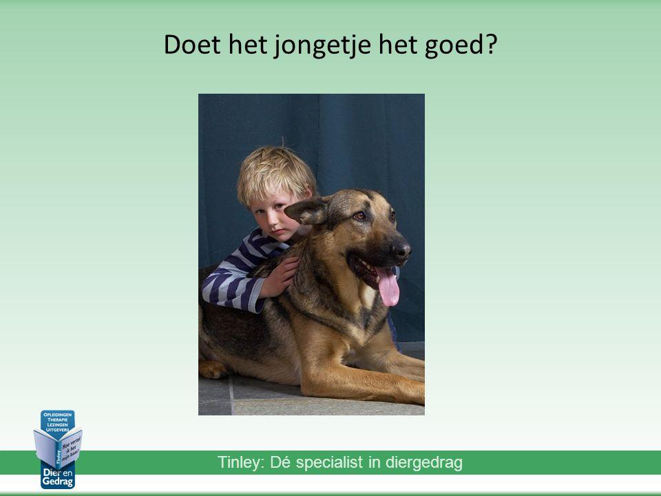 Tinley: Dé specialist in diergedrag Doet het jongetje het goed?