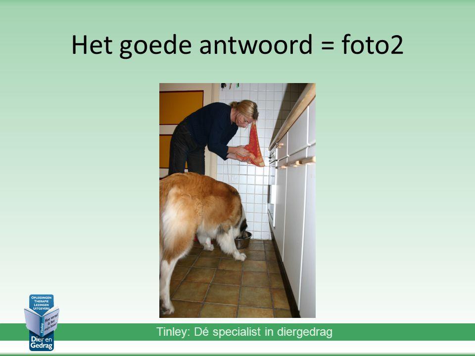 Tinley: Dé specialist in diergedrag Het goede antwoord = foto2