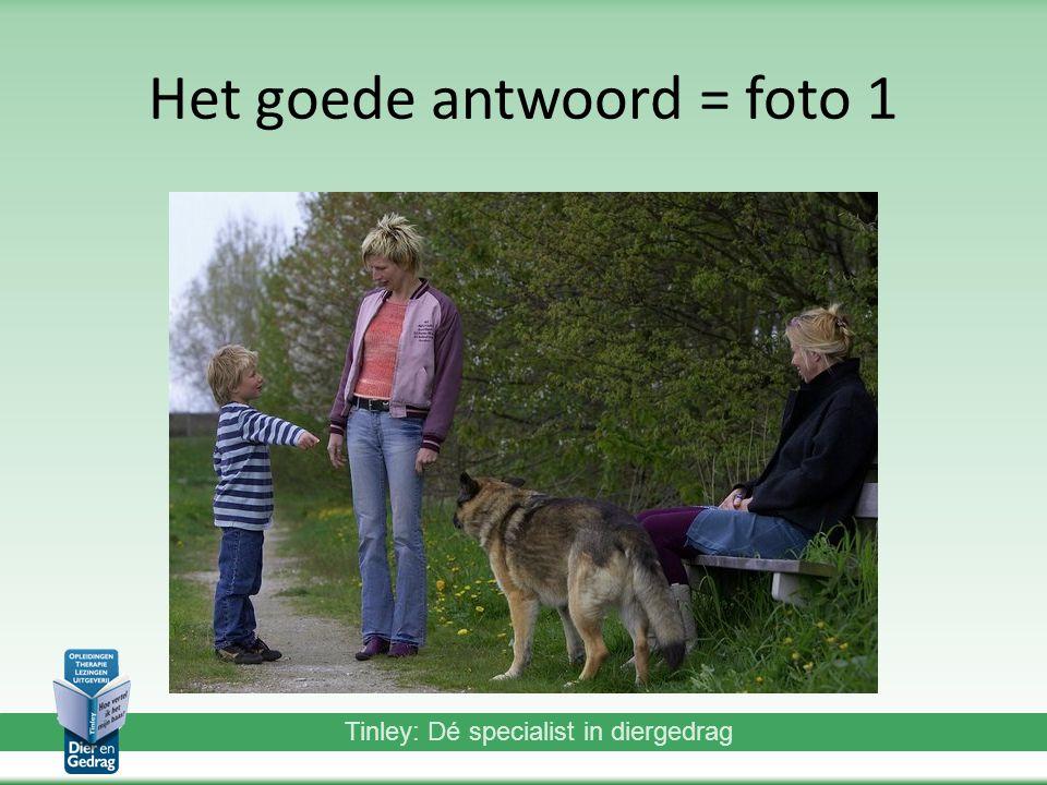 Tinley: Dé specialist in diergedrag Het goede antwoord = foto 1