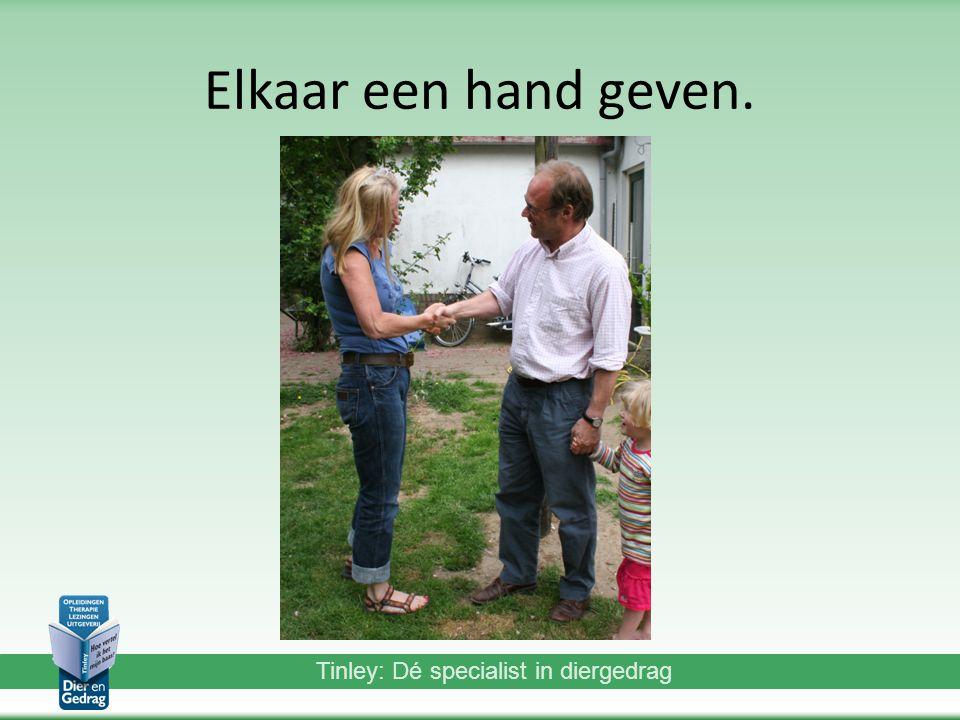 Tinley: Dé specialist in diergedrag Elkaar een hand geven.
