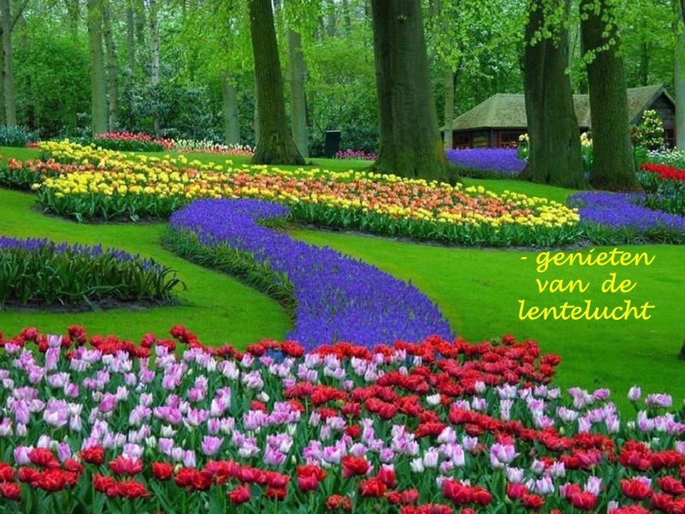 - genieten van de lentezon