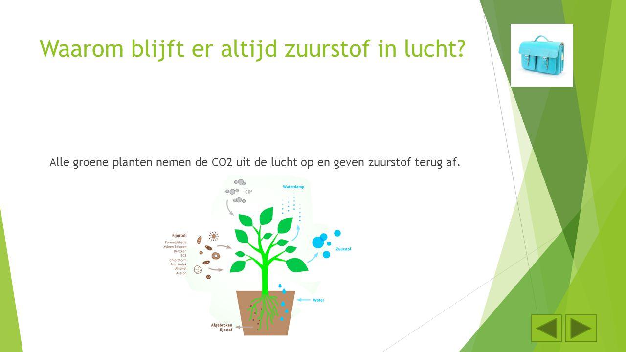 Waarom blijft er altijd zuurstof in lucht? Alle groene planten nemen de CO2 uit de lucht op en geven zuurstof terug af.