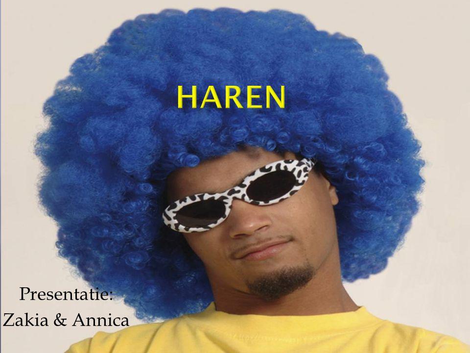  1.Mensenhaar  2. Haarkleur  3. Haarverzorging & haar accessoires  4.