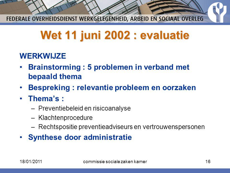 Wet 11 juni 2002 : evaluatie WERKWIJZE Brainstorming : 5 problemen in verband met bepaald thema Bespreking : relevantie probleem en oorzaken Thema's :
