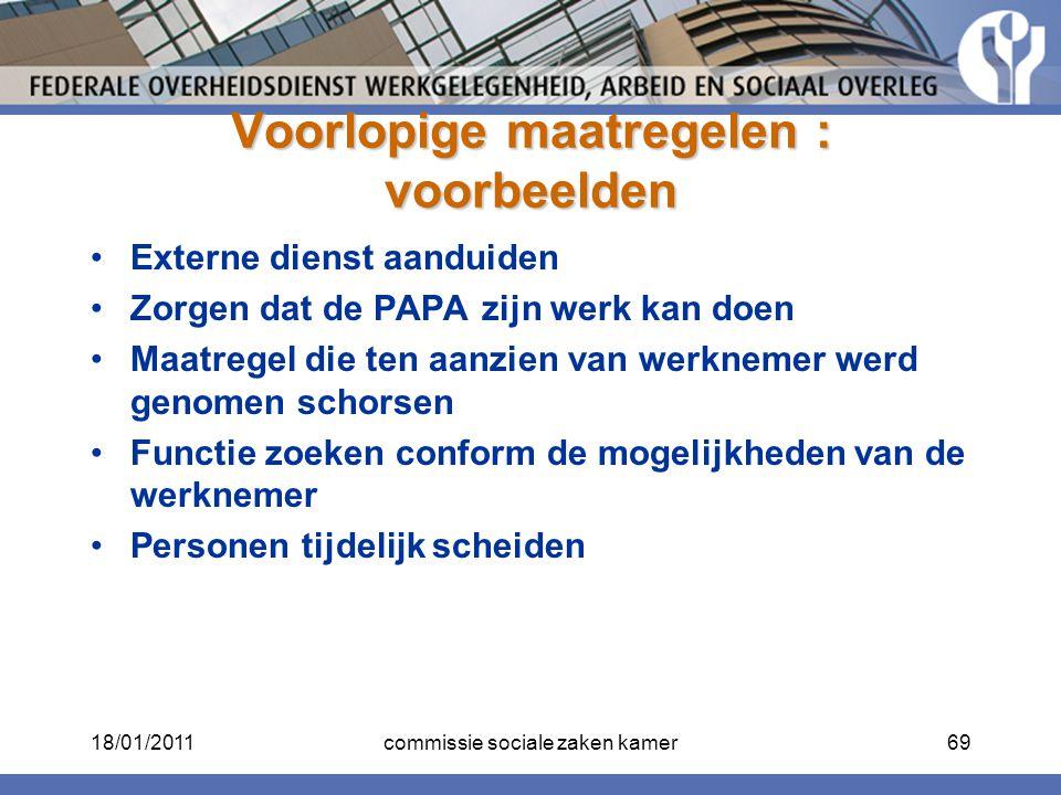 Voorlopige maatregelen : voorbeelden Externe dienst aanduiden Zorgen dat de PAPA zijn werk kan doen Maatregel die ten aanzien van werknemer werd genom