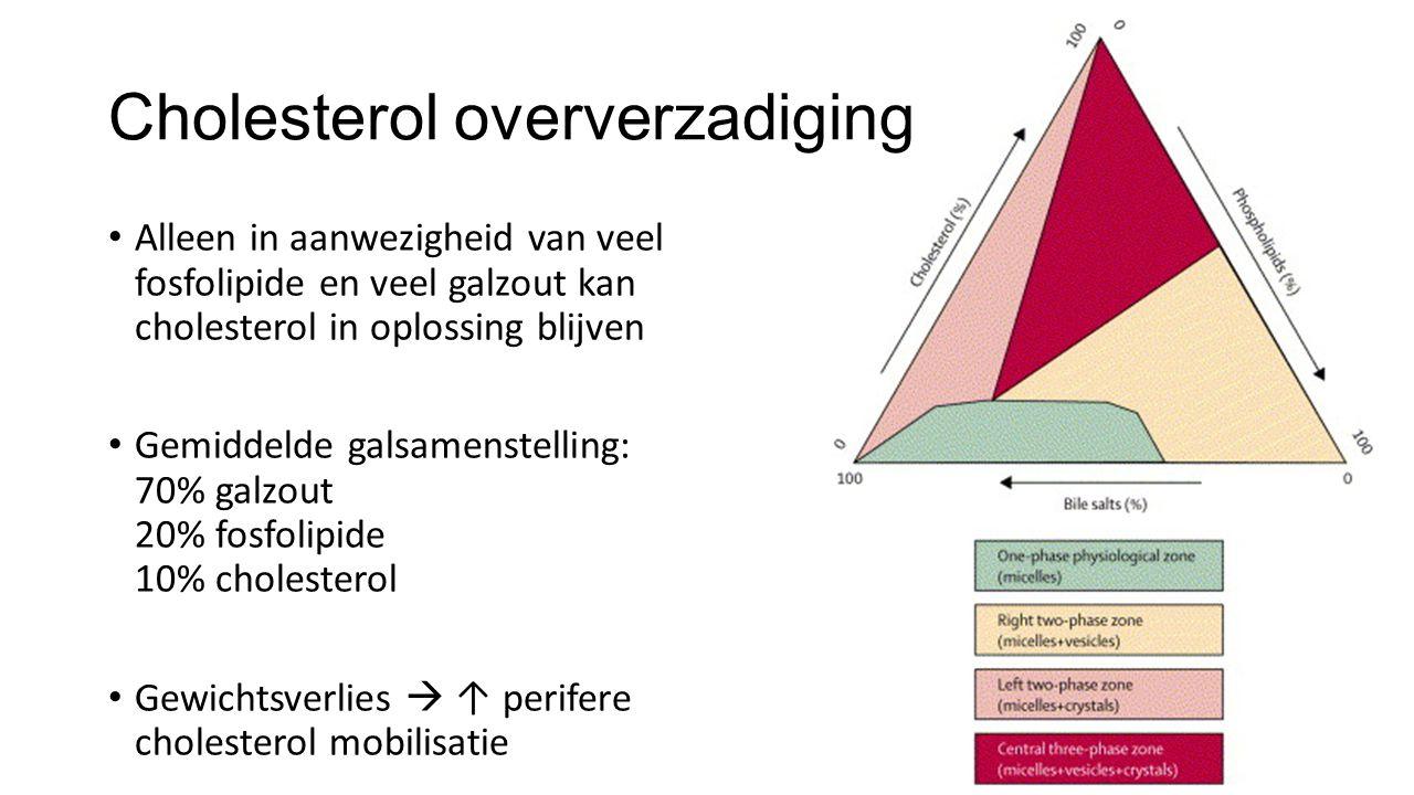 Cholesterol oververzadiging Alleen in aanwezigheid van veel fosfolipide en veel galzout kan cholesterol in oplossing blijven Gemiddelde galsamenstelling: 70% galzout 20% fosfolipide 10% cholesterol Gewichtsverlies  ↑ perifere cholesterol mobilisatie